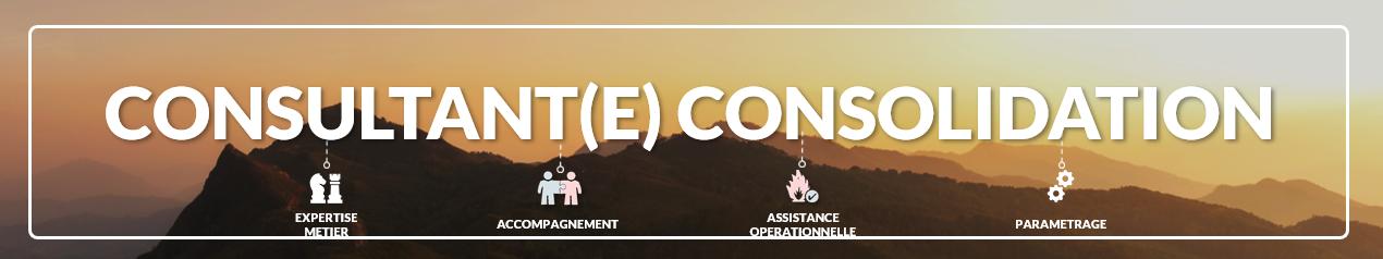 emploi consultant assistance opérationnelle
